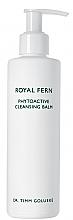 Düfte, Parfümerie und Kosmetik Sanfter feuchtigkeitsspendender, antioxidativer und pflegender Gesichtsreinigungsbalsam - Royal Fern Phytoactive Cleansing Balm