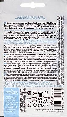 Cryo-Gesichtsmaske mit sibirischer Iris - Farmona Herbal Care Siberian Iris Face Cryo-Mask — Bild N2