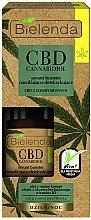 Düfte, Parfümerie und Kosmetik Gesichtsserum mit Cannabisöl und Vitamin B3 - Bielenda CBD Cannabidiol Serum