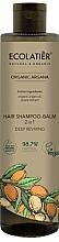 Düfte, Parfümerie und Kosmetik 2in1 Shampoo und Haarspülung mit Bio Arganöl und Traubenextrakt - Ecolatier Organic Argana Hair-Shampoo Balm
