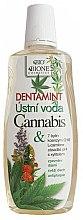 Düfte, Parfümerie und Kosmetik Mundwasser mit Hanföl - Bione Cosmetics Dentamint Mouthwash Cannabis