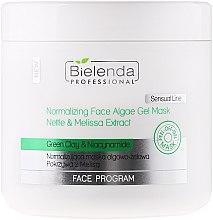 Düfte, Parfümerie und Kosmetik Normalisierende Algengelmaske für das Gesicht mit Brennnessel, grünem Ton und Zitronenmelisse - Bielenda Professional Normalizing Face Algae Gel Mask