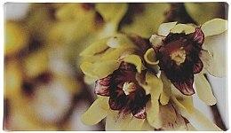Seife - Acca Kappa Calycanthus Soap — Bild N3