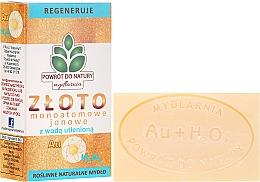 Düfte, Parfümerie und Kosmetik Naturseife mit Mattgold und Wasserstoffperoxid - Powrot do Natury Natural Soap Matt Gold and Hydrogen Peroxide
