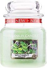 """Düfte, Parfümerie und Kosmetik Yankee Candle Wild Mint - Duftkerze im Glas mit natürlichen Extrakten """"Wild Mint"""""""