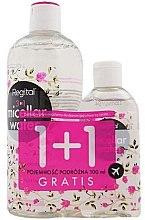 Düfte, Parfümerie und Kosmetik Gesichtspflegeset - Regital (Mizellenwasser 400ml + Mizellenwasser 100ml)