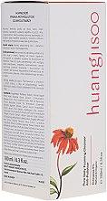 Düfte, Parfümerie und Kosmetik Reinigungsschaum für das Gesicht mit 5% Echinacea - Huangjisoo Pure Daily Foaming Cleanser Anti-pollution