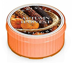 Düfte, Parfümerie und Kosmetik Duftkerze Autumn Harvest - Kringle Candle Autumn Harvest Daylight