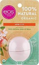 Düfte, Parfümerie und Kosmetik Lippenbalsam mit Aprikosengeschmack und Sheabutter - Eos 100% Natural Organic Apricot Lip Balm