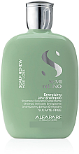 Düfte, Parfümerie und Kosmetik Energitisierendes Shampoo gegen Haarausfall mit Leinsamenextrakt - Alfaparf Semi Di Lino Scalp Renew Energizing Low Shampoo
