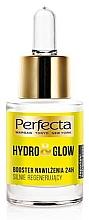 Düfte, Parfümerie und Kosmetik Intensiv feuchtigkeitsspendender und regenerierender Gesichtsbooster - Perfecta Hydro & Glow Booster