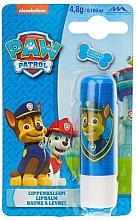 Düfte, Parfümerie und Kosmetik Lippenbalsam für Kinder mit Blaubeergeschmack Paw Patrol - Nickelodeon Paw Patrol Lipbalm