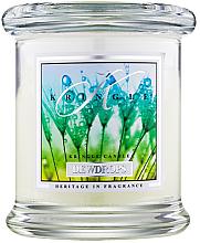 Düfte, Parfümerie und Kosmetik Duftkerze im Glas Dewdrops - Kringle Candle Dewdrops