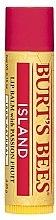 Düfte, Parfümerie und Kosmetik Lippenbalsam - Burt's Bees Passion Fruit Lip Balm