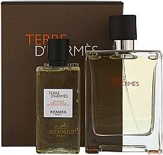 Düfte, Parfümerie und Kosmetik Hermes Terre dHermes - Duftset (Eau de Toilette/100ml + Duschgel/80ml)