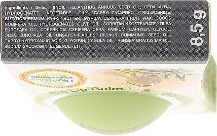 Regenerierender und feuchtigkeitsspendender Lippenbalsam mit Olivenöl - Bioteq Bio Lip Balm Regenerative and Moisturizing Olive Oil — Bild N2