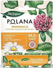 Düfte, Parfümerie und Kosmetik Regenerierender Lippenbalsam mit Gänseblümchen, Salbei und Perillaöl - Polana