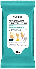 Düfte, Parfümerie und Kosmetik Antibakterielle Allzweck-Feuchttücher mit Salbeiextrakt - Luba Antibacterial Wet Wipes