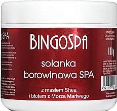 Düfte, Parfümerie und Kosmetik Torfsole mit Sheabutter und Schlamm aus dem Toten Meer - BingoSpa Brine Mud With Shea Butter