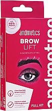 Düfte, Parfümerie und Kosmetik Augenbrauenset für Fixierung und Lifting - Andmetics Brow Lift Kit (Augenbrauenkleber 7ml + Well-Lotion für Augenbrauen 5ml + Fixierende Augenbrauenlotion 5ml + Augenbrauenbürste 1St.)