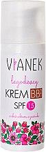 Düfte, Parfümerie und Kosmetik Beruhigende BB Creme LSF 15 - Vianek Soothing BB Cream SPF 15