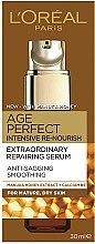 Düfte, Parfümerie und Kosmetik Extra-Reichhaltig reparierendes Serum - L'Oreal Age Perfect Intensive Re-nourish Extraordinary Repairing Serum