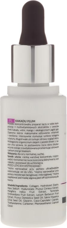 Gesichtskonzentrat mit Pflaumenextrakt - APIS Professional Kakadu Plum Concentrate — Bild N2