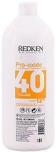 Düfte, Parfümerie und Kosmetik Entwicklerlotion 12% - Redken Pro-Oxide 40 vol. 12%