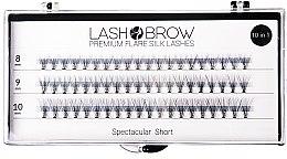 Düfte, Parfümerie und Kosmetik Wimpernbüschel-Set - Lash Brown Premium Flare Silk Lashes Spectacular Short