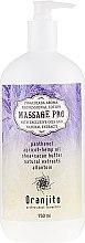 Düfte, Parfümerie und Kosmetik Massage Milch Pina Colada - Oranjito Massage Pro Pina Colada Massage Body Milk
