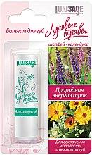 Düfte, Parfümerie und Kosmetik Pflegender Lippenbalsam mit Salbei und Ringelblume - Luxvisage