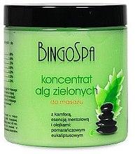 Düfte, Parfümerie und Kosmetik Massagekonzentrat für den Körper mit Grünalgen - BingoSpa Concentrate Green Algae Massage