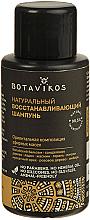 Düfte, Parfümerie und Kosmetik Natürliches Shampoo für geschädigtes Haar mit Kräuterölen - Botavikos Natural Repairing Shampoo (Mini)