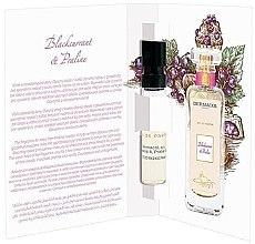 Düfte, Parfümerie und Kosmetik Dermacol Blackcurrant & Praline - Eau de Parfum (Probe)
