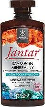 Düfte, Parfümerie und Kosmetik Shampoo mit Bernsteinextrakt und Mineralien für alle Haartypen - Farmona Jantar Mineral Shampoo