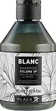 Düfte, Parfümerie und Kosmetik Shampoo für mehr Volumen mit Bambusextrakt - Black Professional Line Blanc Volume Up Shampoo