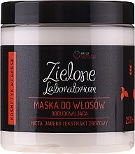 Düfte, Parfümerie und Kosmetik Regenerierende Haarmaske mit Minze-, Apfel- und Getreideextrakt - Zielone Laboratorium