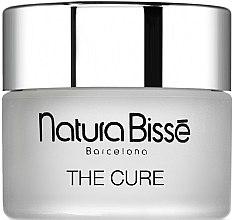 Düfte, Parfümerie und Kosmetik Entgiftende Feuchtigkeitscreme - Natura Bisse The Cure Cream