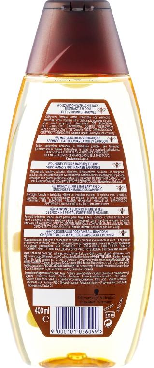 Kraft & Nährpflege Shampoo mit Honig-Elixier und Kaktusfeigenöl - Schwarzkopf Schauma Nature Moments Honey Elixir Shampoo — Bild N2