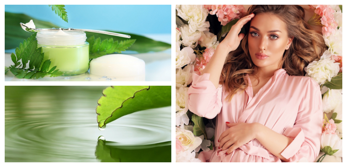 Chlorophyll in der Kosmetik: want oder don