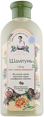 Regenerierendes Shampoo - Rezepte der Oma Agafja — Bild N1