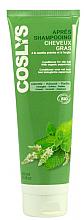 Düfte, Parfümerie und Kosmetik Haarspülung für fettiges Haar mit Bio-Pfefferminze - Coslys Conditioner with organic peppermint