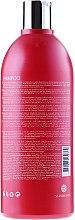 Farbschutz-Shampoo für coloriertes Haar - Kativa Quinua PRO Shampoo — Bild N4