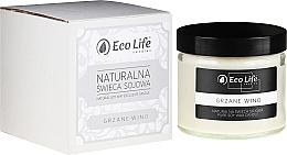 Düfte, Parfümerie und Kosmetik Soja-Duftkerze Mulled Wine - Eco Life Soy Wax Candles