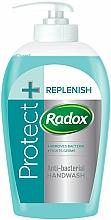 Düfte, Parfümerie und Kosmetik Antibakterielle flüssige Handseife - Radox Protect+Replenish Antibac Hand Wash