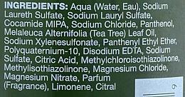 Shampoo für mehr Volumen - Paul Mitchell Tea Tree Lemon Sage Thickening Shampoo — Bild N3