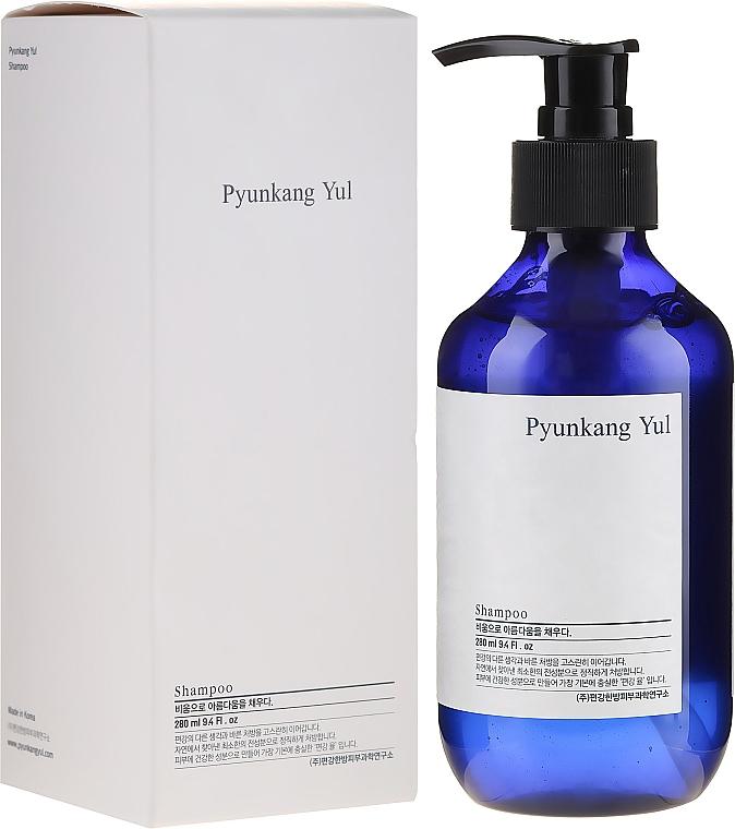 Straffendes Bio Shampoo mit Ingwer-Extrakt - Pyunkang Yul Shampoo — Bild N1
