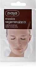Düfte, Parfümerie und Kosmetik Regenerierende Gesichtsmaske mit brauner Tonerde - Ziaja Face Mask