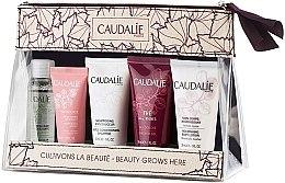 Düfte, Parfümerie und Kosmetik Körperpflegeset - Caudalie Travel Set (Gesichtswasser 30ml + Gesichtscreme 15ml + Shampoo 30ml + Duschgel 30ml + Körperlotion 30ml)