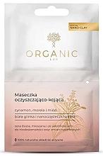 Düfte, Parfümerie und Kosmetik Beruhigende Gesichtsreinigungsmaske - Organic Lab Cleansing And Soothing Mask Cinnamon Apricot And Honey
